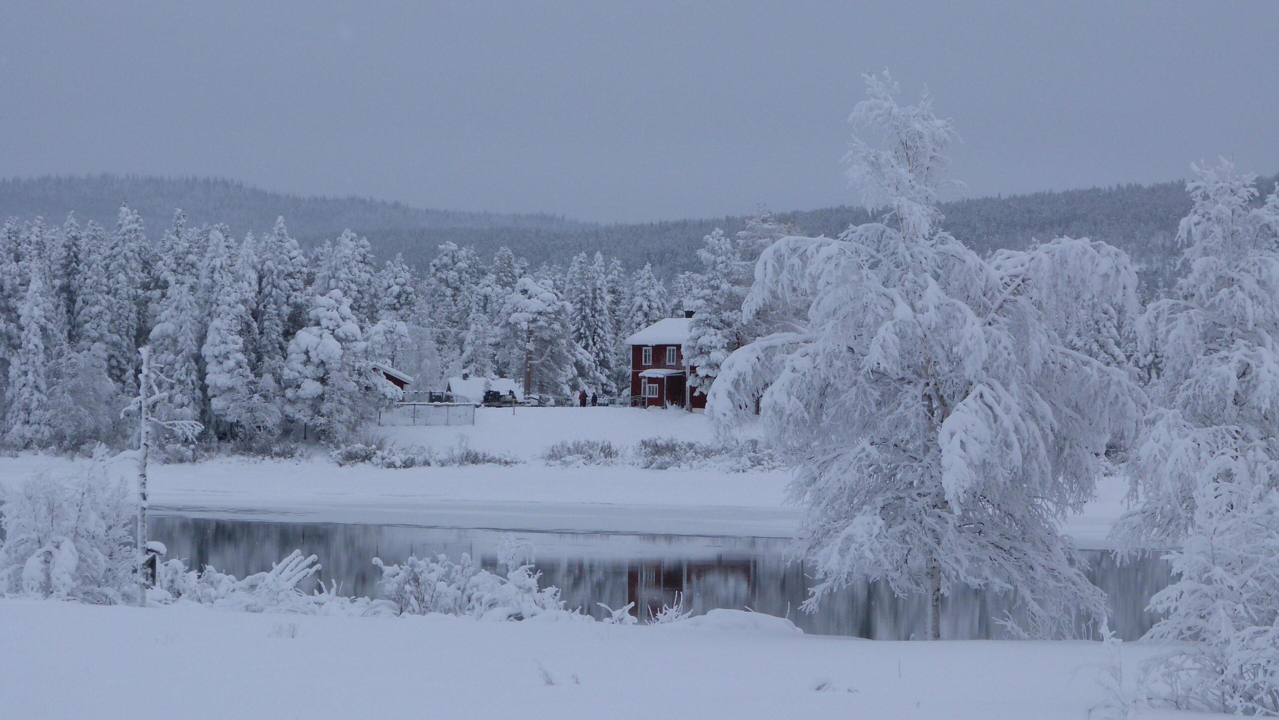 Jokkmokk_February-Tjåmotis