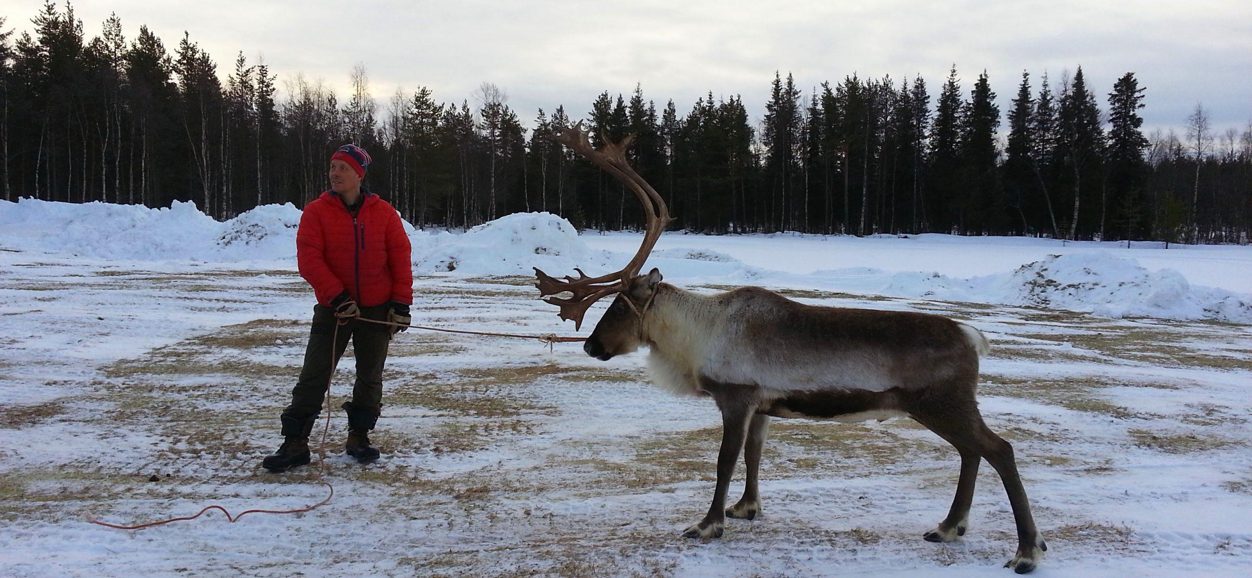 Jokkmokk-Visit-Sápmi-Länta