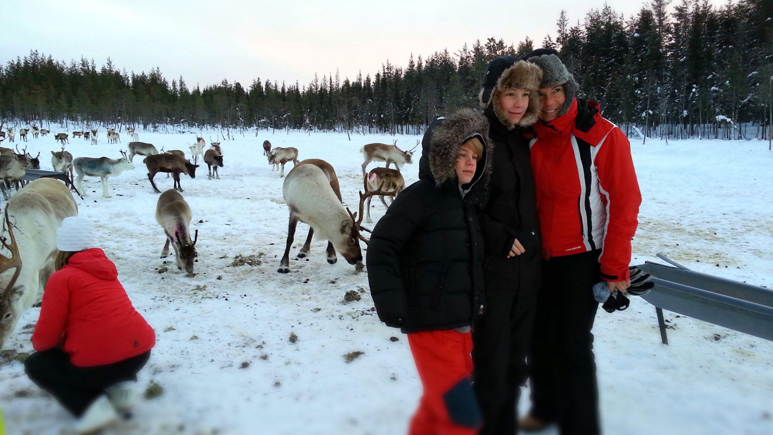 JokkmokkArcticDream-visitLänta-Belgianfamily