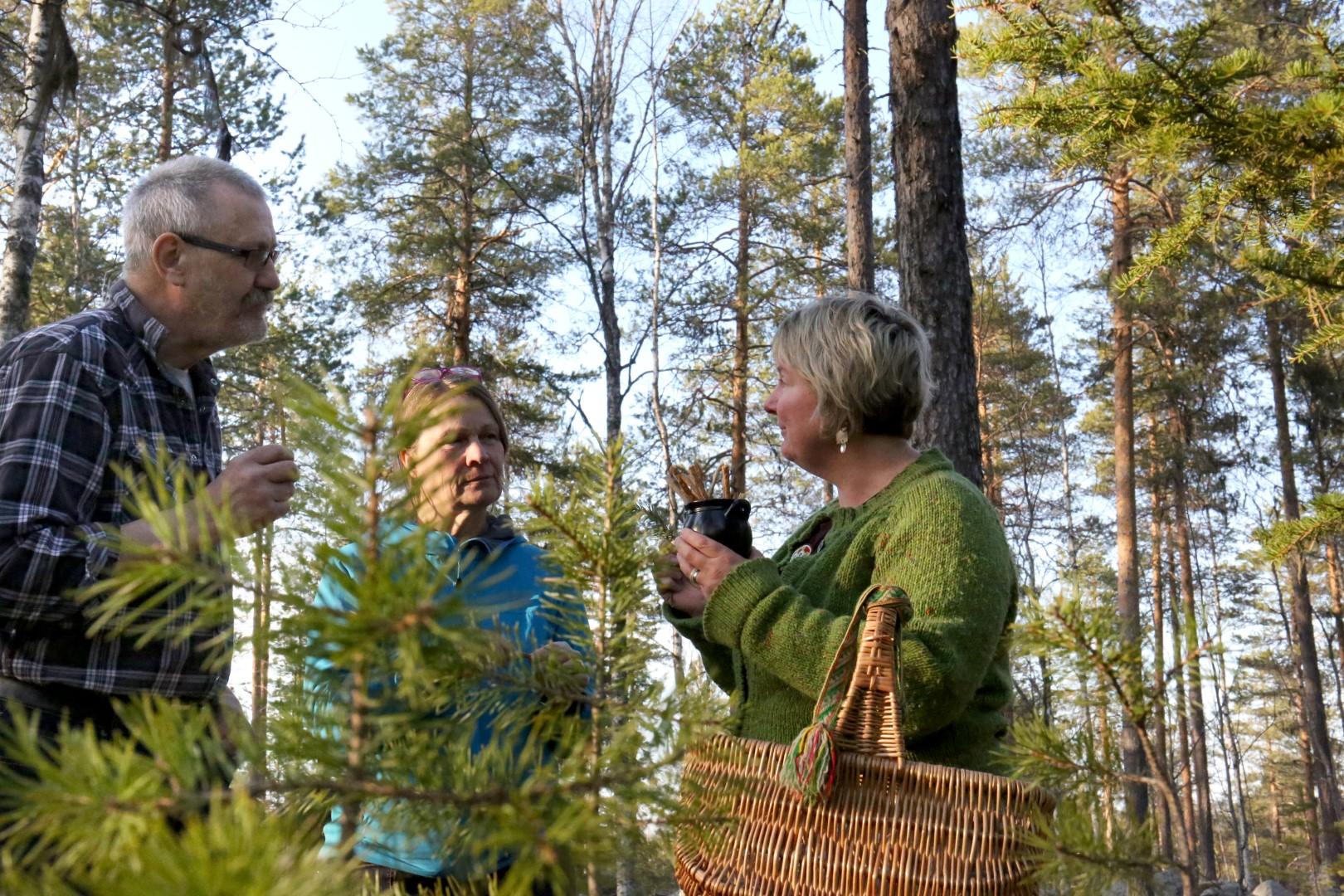 Jokkmokk Arctic Dream - eva_i-_skogen_2