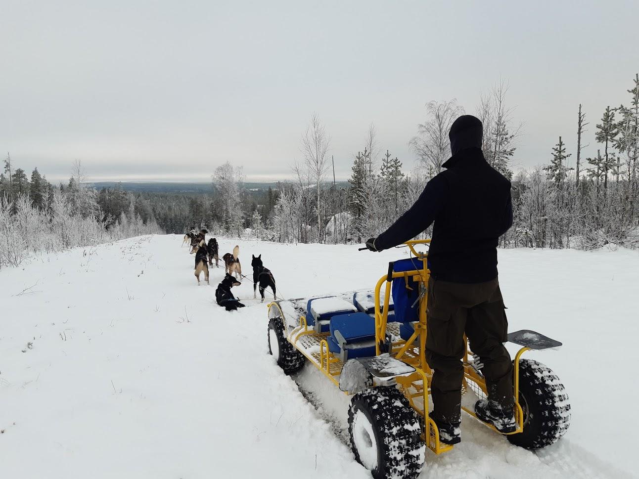 Gasten doen wagentour met huskies in sneeuw