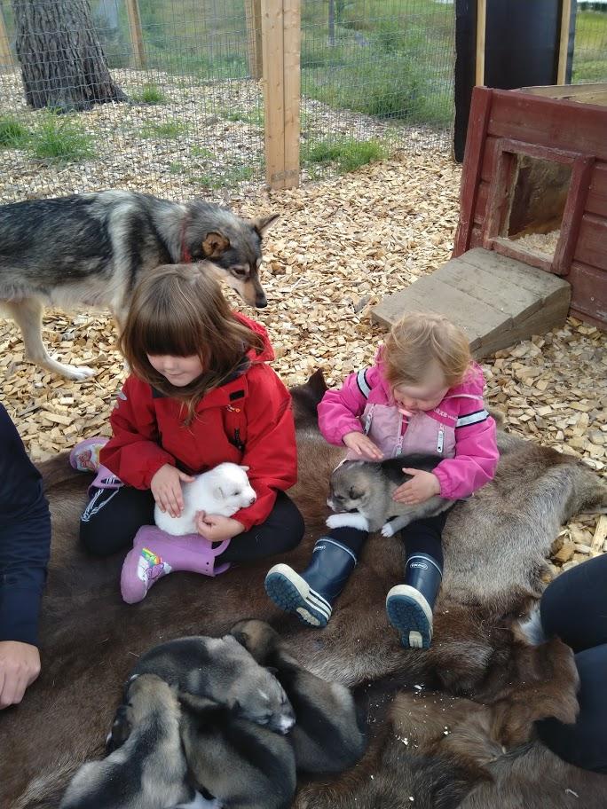 Kinderen knuffelen puppies